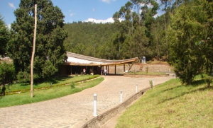 The HoA-REC&N relocated its headquarters to one of the first eco-friendly buildings in Ethiopia in June 2013