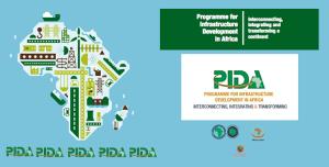 PIDA1