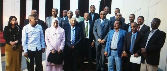 GERD Sudan media visit2